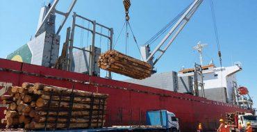 En menos de un mes, salieron dos barcos con madera hacia China