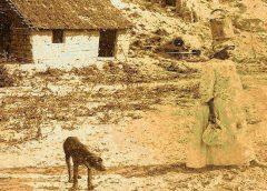 Nuevo libro sobre arqueología histórica del Barrio del Tambor de Paraná